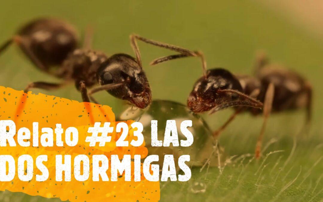 Relato #23 LAS DOS HORMIGAS