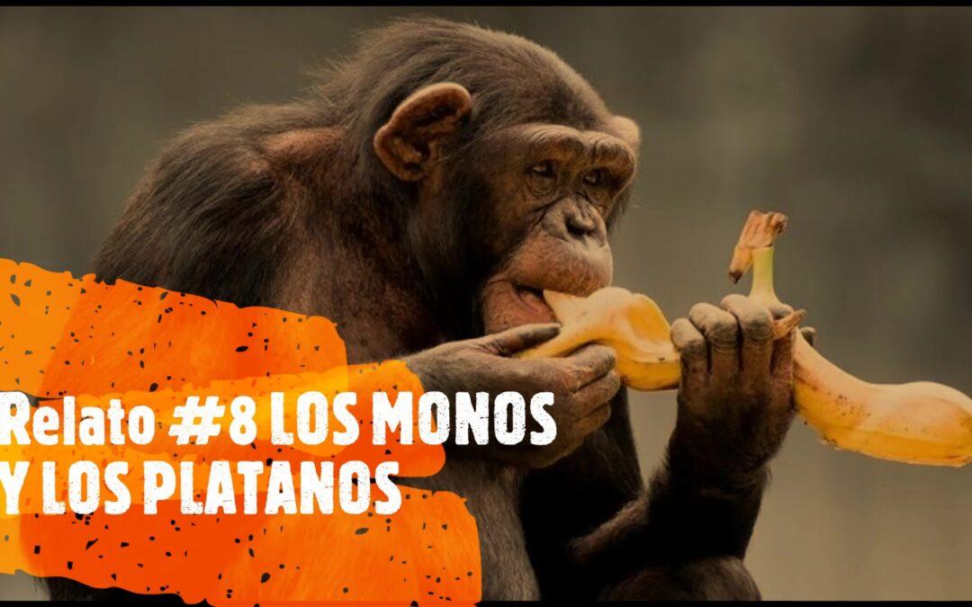 MONOS Y PLATANOS