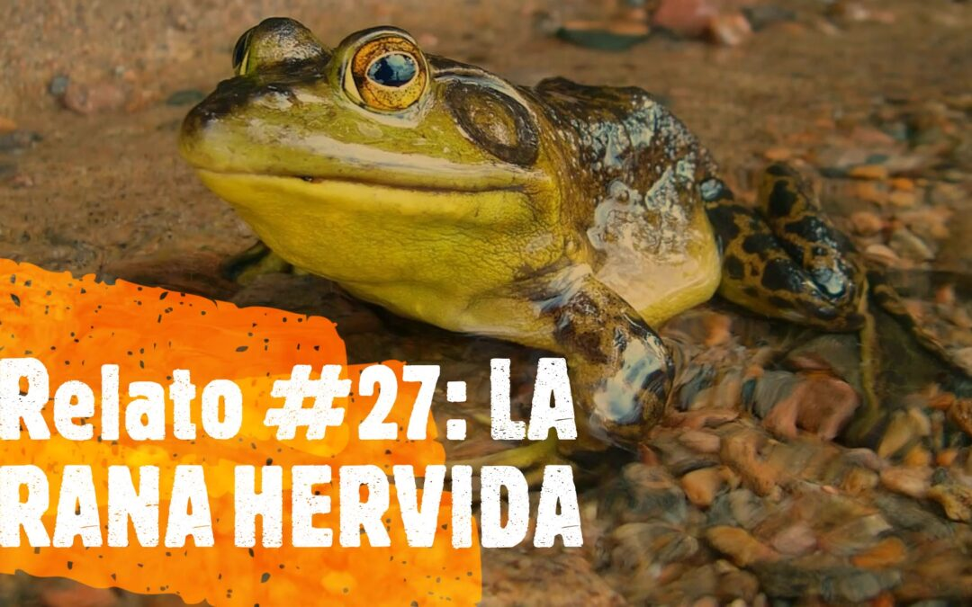 Relato #27 LA RANA HERVIDA