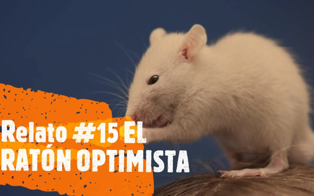 el ratón optimista
